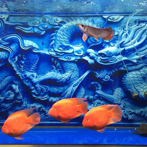 aquarium decor de fond aquarium decoration fish tank decoration 3d background cameo print in decorations
