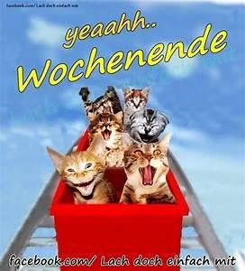 Bilder Schönes Wochenende Lustig : sch nes wochenende spr che lustig kostenlos guten bilder ~ Frokenaadalensverden.com Haus und Dekorationen