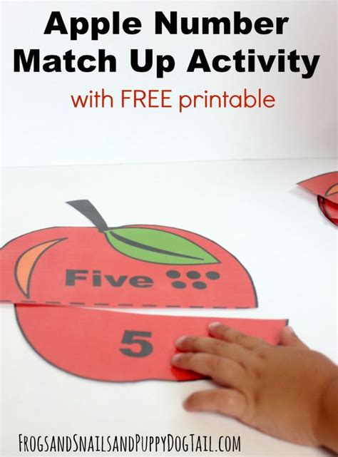 apple lessons for preschool best 25 numbers for ideas on counting 169