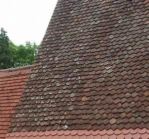 Moos Entfernen Dach : moos entfernen dach moos entfernen dachreinigung und moosentfernung dachreinigung dachziegel ~ Orissabook.com Haus und Dekorationen