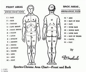 Tattoo Locations Chart Tattoo Pain Chart Photos 2015
