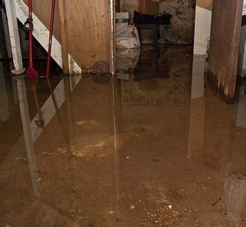 home eco disaster services