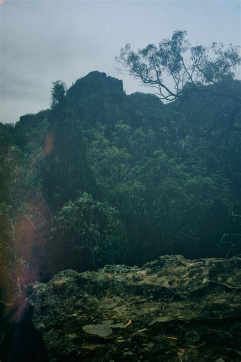 wilderness tumblr