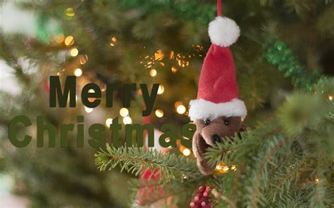 Merry Christmas Wallpapers, Pictures, Images