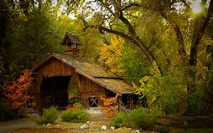 house, in, the, autumn, forest, wallpapers, and, images