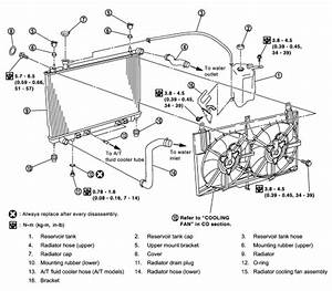Car Belt Diagrams  How To Replace Radiator On Nissan Maxima