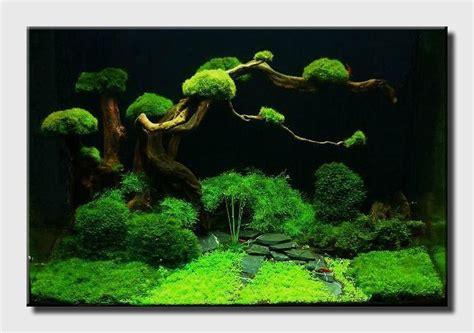 cool aquascapes aqua scaping nano fresh artificial plants