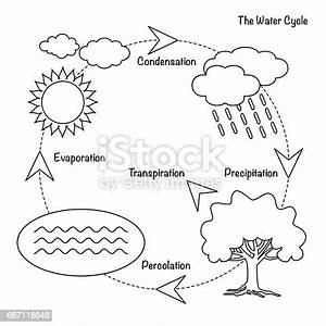 The Water Cycle Stock Vector Art  U0026 More Images Of Arrow
