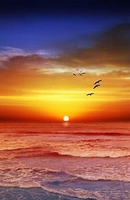 Beautiful Beach Sunset Australia
