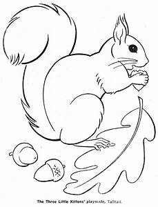 Squirrel Template - AZ Coloring Pages