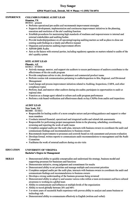 audit lead resume samples velvet jobs