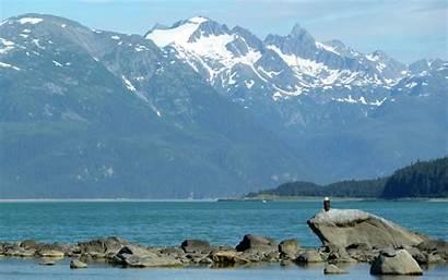 Alaska Skagway Bald Eagle America Mlewallpapers Widescreen