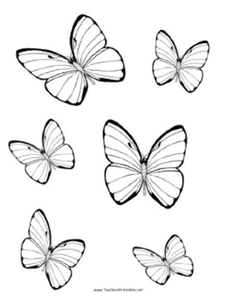 butterfly templates teachers printable butterfly stuff