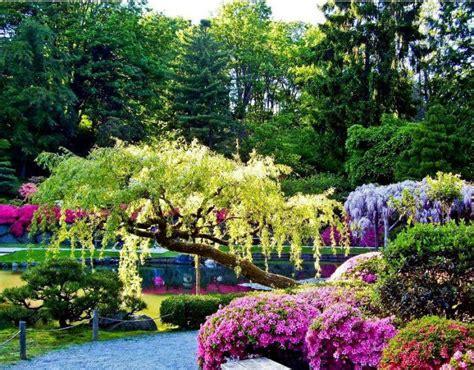 I Love Egypt Beautiful Gardens 1