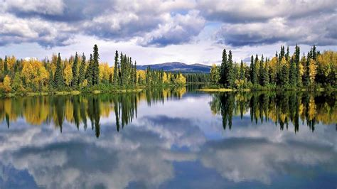 Lake Pine Forest, Sky With Dark Cloud Reflection In Lake