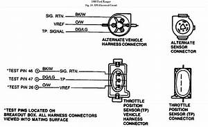 1989 Ford Engine Harness