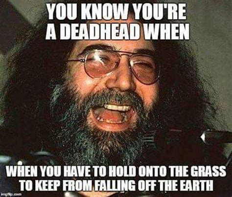 Grateful Dead Memes - 460 best the grateful dead images on pinterest song quotes the dead and music