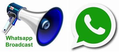 Broadcast Whatsapp Usare Gruppo Messaggio Lista