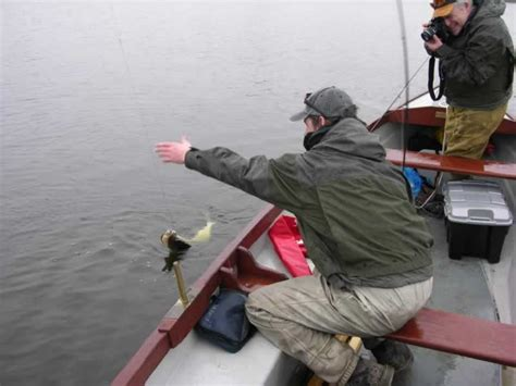 Fishing Boats In Ireland Done Deal by Pike On The Fly Boat Fishing For Pike Irish Pike Terrys
