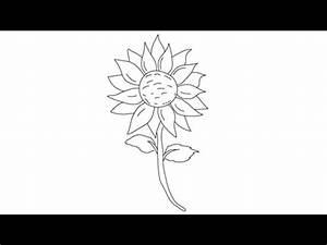 How to draw a Sunflower - Easy step-by-step drawing ...