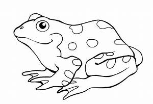 frog coloring pages free printable - 15 frog coloring pages print color craft