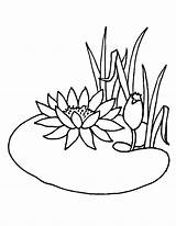 Coloring Pages Pond Lotus Flower Drawing Animals Water Flowers Summer Lily Chinese Colouring Growing Printable Getcolorings Print Colorings Drawings Visit sketch template