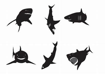 Shark Silhouette Vector Silhouettes Clipart Vectors Sea