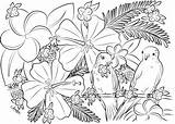 Coloring Adult Printable Birds Hawaiian Paradise Parakeets Flowers Pineapples sketch template