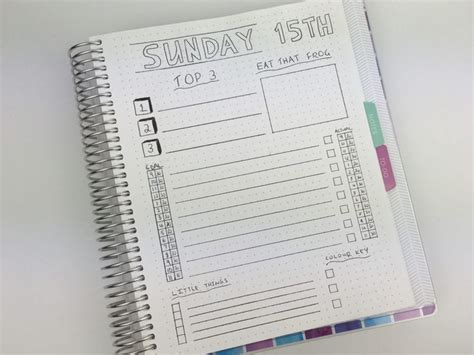daily planning bullet journal style   plum paper