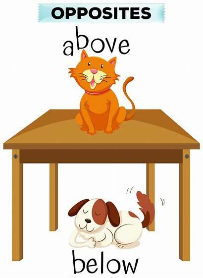Above Below Opposite Words Illustration Vector Clip
