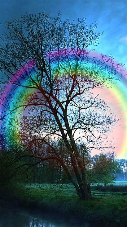 Iphone 6s Rainbow Tree Wallpapers Yopriceville Backgrounds