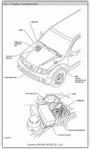 2000 Xterra Fuel Pump Wiring Diagram