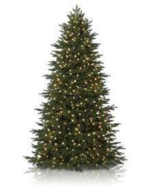 cheapest real christmas trees christmas lights decoration