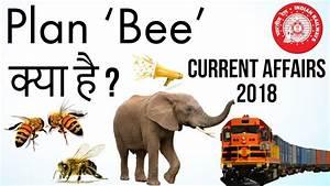 What is Plan BEE मधुमक्खियां बचायेंगी हाथियों की जान ...