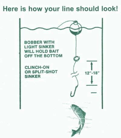 bobber fishing bass fishing fishing tips trout fishing