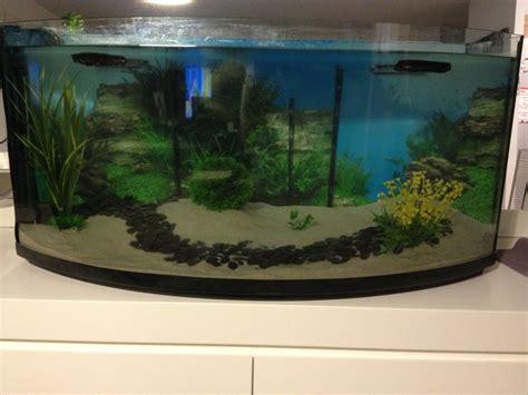 aquarium eau douce 200 l