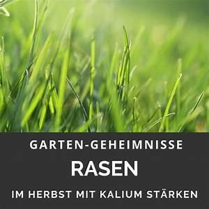Rasen Düngen Herbst : holzasche garten geheimnisse ~ Watch28wear.com Haus und Dekorationen