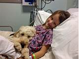 Service Dogs In Hospitals Photos