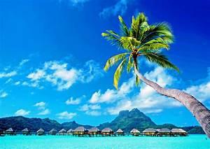 Tahiti By Land Or Sea Food Wine Travel The