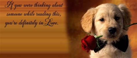 dogs quotes facebook covers  weneedfun