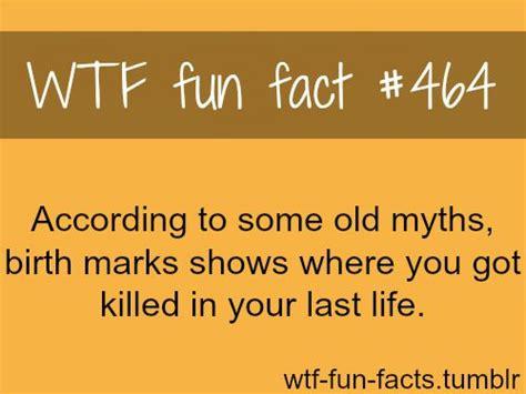 Wtf Fun Facts Picmia