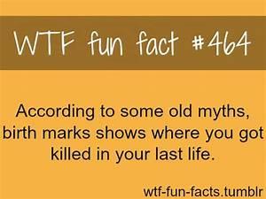 Wtf Fun Facts - Picmia