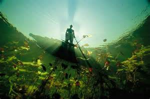 Fisherman in Mokoro Okavango Delta Botswana by David