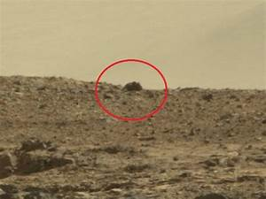 The Curiosity Rover Just Spotted A Mouse On Mars. Find Out ...