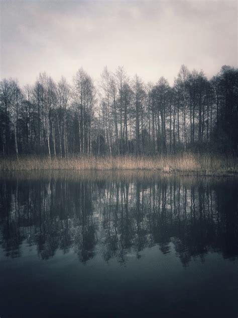 danijel ivic dark reflection