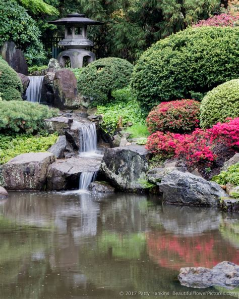 A Visit to Shofuso Japanese House and Gardens :: Beautiful ...
