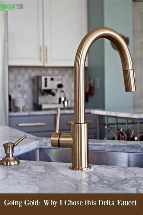 kitchen faucets san diego delta gold trinsic kitchen faucet chic and