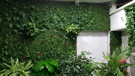 Images Of Vertical Gardens by Artificial Plants Vertical Green Wall By Ankur Nursery