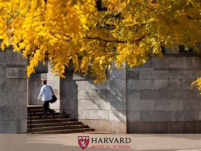 Medical Harvard Desktop Backgrounds Wallpapers Laptop Hms