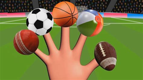 Fun Learn Types Of Sports Balls